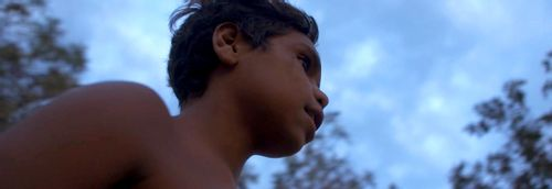 In My Blood It Runs - An eye-opening tale of struggling Indigenous youth
