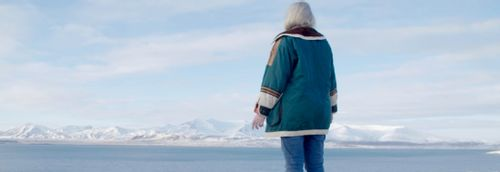 The Seer and the Unseen - Elves and environmentalism under the Northern Lights