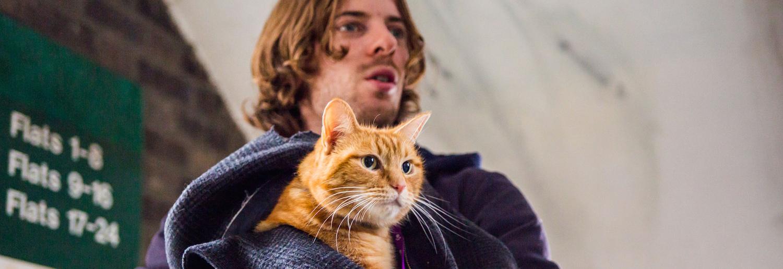 A Street Cat Named Bob - Sanitised truth