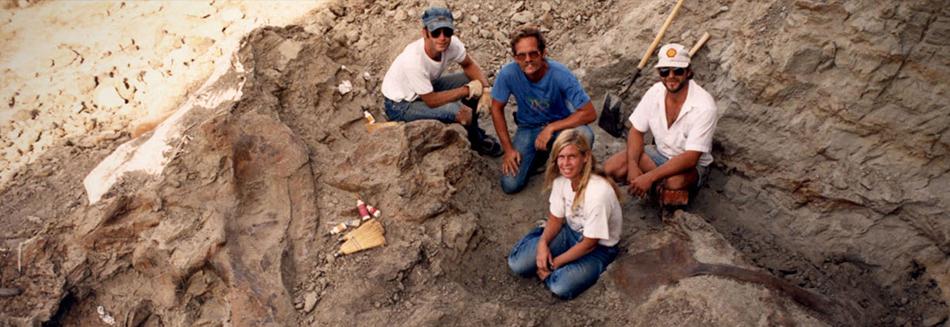 Dinosaur 13 - A prehistoric battle of ownership