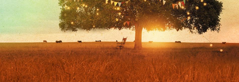Splendour in the Grass - Splendid 2013 line-up
